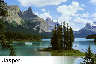 Tours and activity bookings in Jasper, Alberta